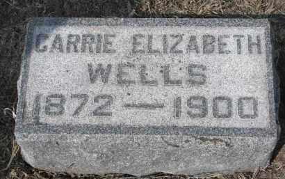 WELLS, CARRIE ELIZABETH - Stanton County, Nebraska | CARRIE ELIZABETH WELLS - Nebraska Gravestone Photos