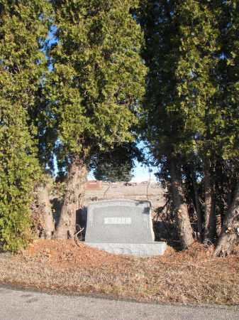 WITTE, PLOT - Stanton County, Nebraska   PLOT WITTE - Nebraska Gravestone Photos