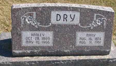 DRY, MARY - Thayer County, Nebraska | MARY DRY - Nebraska Gravestone Photos