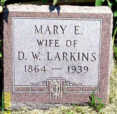 LARKINS, MARY E. - Thayer County, Nebraska | MARY E. LARKINS - Nebraska Gravestone Photos