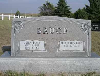 BRUCE, LUCILLE FERN - Thomas County, Nebraska | LUCILLE FERN BRUCE - Nebraska Gravestone Photos