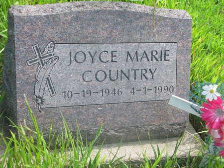 COUNTRY, JOYCE MARIE - Thurston County, Nebraska | JOYCE MARIE COUNTRY - Nebraska Gravestone Photos