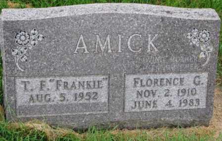AMICK, FLORENCE G. - Thurston County, Nebraska | FLORENCE G. AMICK - Nebraska Gravestone Photos