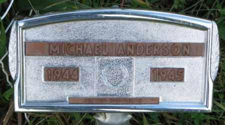 ANDERSON, MICHAEL - Thurston County, Nebraska   MICHAEL ANDERSON - Nebraska Gravestone Photos