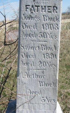 BLACK, STUART (CLOSE UP) - Thurston County, Nebraska | STUART (CLOSE UP) BLACK - Nebraska Gravestone Photos