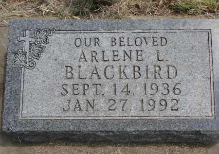 BLACKBIRD, ARLENE L. - Thurston County, Nebraska | ARLENE L. BLACKBIRD - Nebraska Gravestone Photos