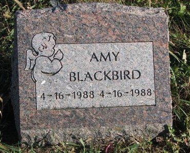 BLACKBIRD, AMY - Thurston County, Nebraska | AMY BLACKBIRD - Nebraska Gravestone Photos