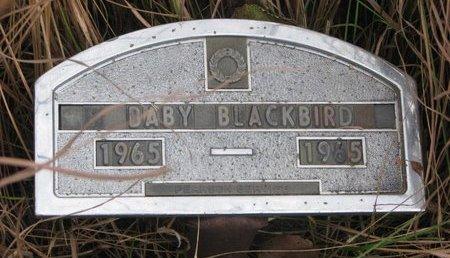 BLACKBIRD, BABY - Thurston County, Nebraska | BABY BLACKBIRD - Nebraska Gravestone Photos