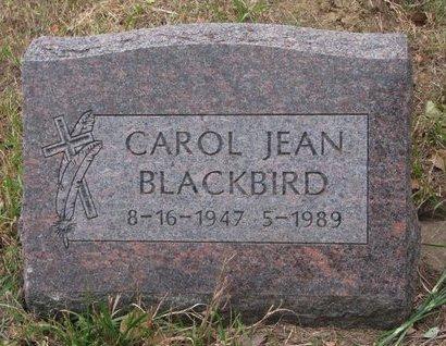 BLACKBIRD, CAROL JEAN - Thurston County, Nebraska | CAROL JEAN BLACKBIRD - Nebraska Gravestone Photos