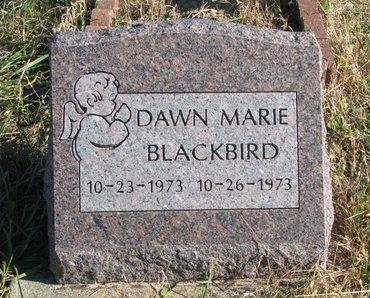 BLACKBIRD, DAWN MARIE - Thurston County, Nebraska | DAWN MARIE BLACKBIRD - Nebraska Gravestone Photos