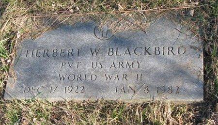 BLACKBIRD, HERBERT W. - Thurston County, Nebraska | HERBERT W. BLACKBIRD - Nebraska Gravestone Photos