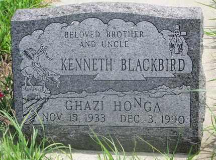 BLACKBIRD, KENNETH - Thurston County, Nebraska   KENNETH BLACKBIRD - Nebraska Gravestone Photos