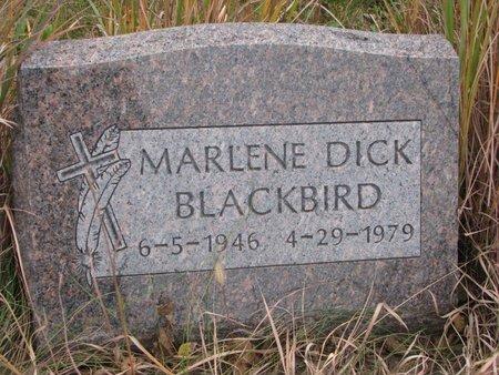 BLACKBIRD, MARLENE - Thurston County, Nebraska | MARLENE BLACKBIRD - Nebraska Gravestone Photos