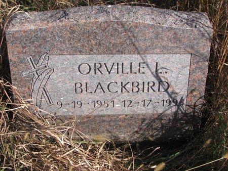 BLACKBIRD, ORVILLE L. - Thurston County, Nebraska | ORVILLE L. BLACKBIRD - Nebraska Gravestone Photos