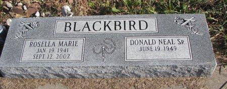 BLACKBIRD, ROSELLA MARIE - Thurston County, Nebraska   ROSELLA MARIE BLACKBIRD - Nebraska Gravestone Photos
