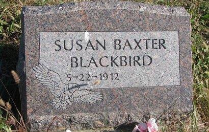 BLACKBIRD, SUSAN - Thurston County, Nebraska | SUSAN BLACKBIRD - Nebraska Gravestone Photos