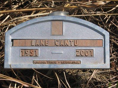 CANTU, LANE - Thurston County, Nebraska | LANE CANTU - Nebraska Gravestone Photos