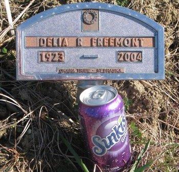 FREEMONT, DELIA R. - Thurston County, Nebraska   DELIA R. FREEMONT - Nebraska Gravestone Photos