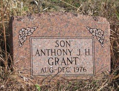 GRANT, ANTHONY J.H. - Thurston County, Nebraska | ANTHONY J.H. GRANT - Nebraska Gravestone Photos