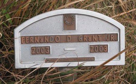 GRANT, FERNANDO D. JR. - Thurston County, Nebraska | FERNANDO D. JR. GRANT - Nebraska Gravestone Photos
