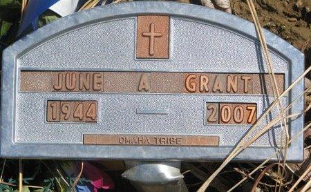 GRANT, JUNE A. - Thurston County, Nebraska | JUNE A. GRANT - Nebraska Gravestone Photos