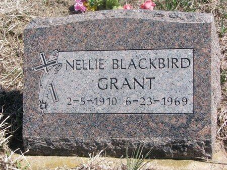 GRANT, NELLIE - Thurston County, Nebraska | NELLIE GRANT - Nebraska Gravestone Photos