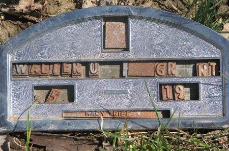 GRANT, WALTER O. - Thurston County, Nebraska   WALTER O. GRANT - Nebraska Gravestone Photos