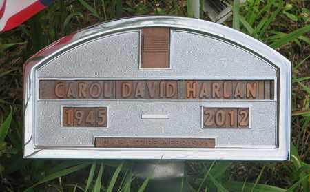 HARLAN, CAROL DAVID - Thurston County, Nebraska | CAROL DAVID HARLAN - Nebraska Gravestone Photos