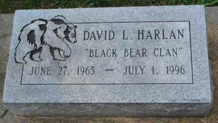 HARLAN, DAVID L. - Thurston County, Nebraska | DAVID L. HARLAN - Nebraska Gravestone Photos