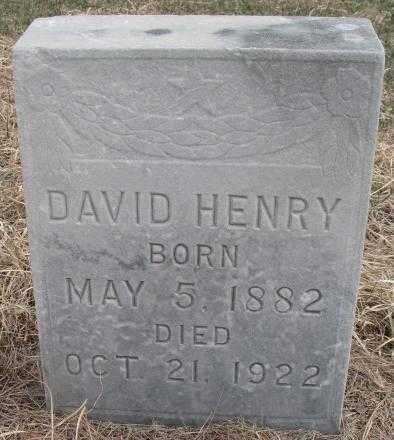 HENRY, DAVID - Thurston County, Nebraska | DAVID HENRY - Nebraska Gravestone Photos