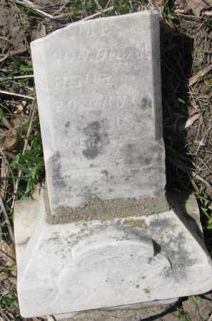 HENRY, JAMES - Thurston County, Nebraska | JAMES HENRY - Nebraska Gravestone Photos