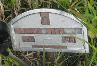 LYONS, WILSON - Thurston County, Nebraska   WILSON LYONS - Nebraska Gravestone Photos