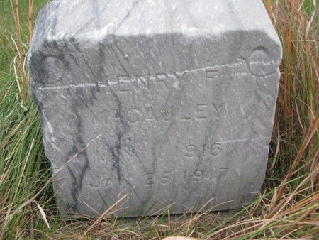 MCCAULEY, HENRY F. - Thurston County, Nebraska | HENRY F. MCCAULEY - Nebraska Gravestone Photos