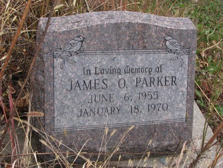 PARKER, JAMES O. - Thurston County, Nebraska | JAMES O. PARKER - Nebraska Gravestone Photos