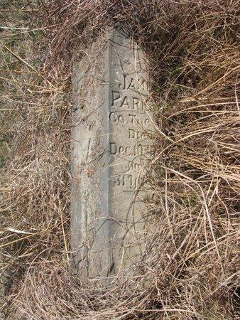 PARKER, JAMES - Thurston County, Nebraska | JAMES PARKER - Nebraska Gravestone Photos