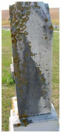PHILLIPS, ALBY - Thurston County, Nebraska | ALBY PHILLIPS - Nebraska Gravestone Photos