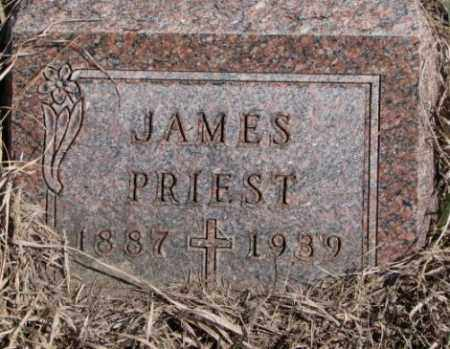 PRIEST, JAMES - Thurston County, Nebraska | JAMES PRIEST - Nebraska Gravestone Photos