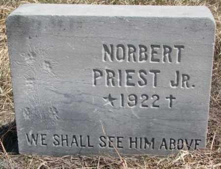 PRIEST, NORBERT JR. - Thurston County, Nebraska | NORBERT JR. PRIEST - Nebraska Gravestone Photos
