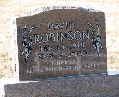 ROBINSON, DAVID - Thurston County, Nebraska | DAVID ROBINSON - Nebraska Gravestone Photos