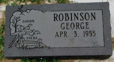 ROBINSON, GEORGE - Thurston County, Nebraska | GEORGE ROBINSON - Nebraska Gravestone Photos