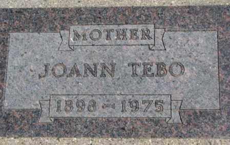 TEBO, JOANN - Thurston County, Nebraska | JOANN TEBO - Nebraska Gravestone Photos