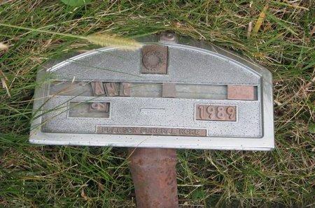 UNKNOWN, ANN - Thurston County, Nebraska | ANN UNKNOWN - Nebraska Gravestone Photos