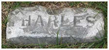 UNKNOWN, HARLES - Thurston County, Nebraska | HARLES UNKNOWN - Nebraska Gravestone Photos