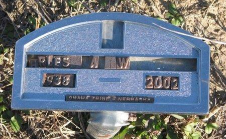 WALKER, CHARLES A. ? - Thurston County, Nebraska | CHARLES A. ? WALKER - Nebraska Gravestone Photos