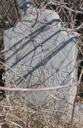WALKER, FOSTER - Thurston County, Nebraska | FOSTER WALKER - Nebraska Gravestone Photos