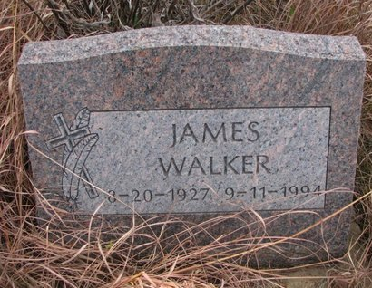 WALKER, JAMES - Thurston County, Nebraska | JAMES WALKER - Nebraska Gravestone Photos