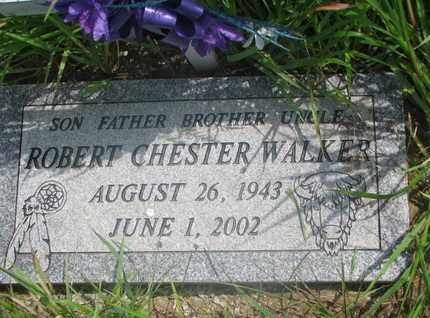 WALKER, ROBERT CHESTER - Thurston County, Nebraska | ROBERT CHESTER WALKER - Nebraska Gravestone Photos