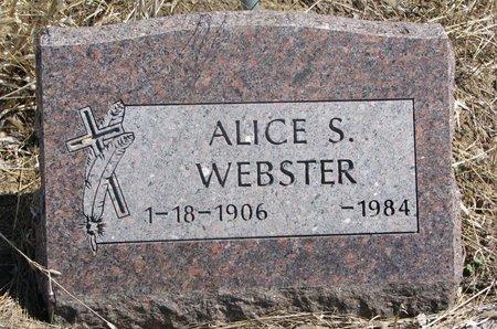WEBSTER, ALICE S. - Thurston County, Nebraska | ALICE S. WEBSTER - Nebraska Gravestone Photos