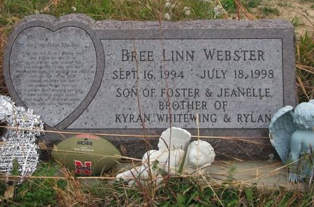 WEBSTER, BREE LINN - Thurston County, Nebraska | BREE LINN WEBSTER - Nebraska Gravestone Photos