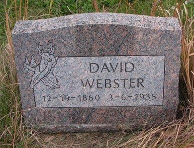 WEBSTER, DAVID - Thurston County, Nebraska | DAVID WEBSTER - Nebraska Gravestone Photos